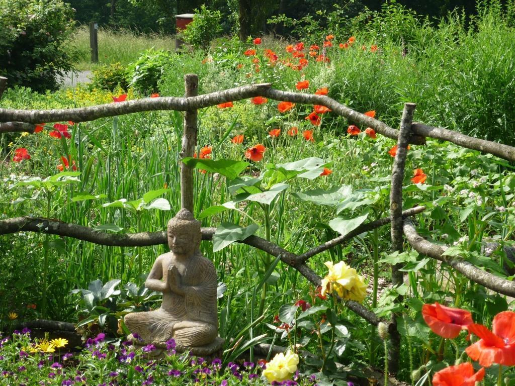 La Colline éclairée, our garden in de Pays des Collines