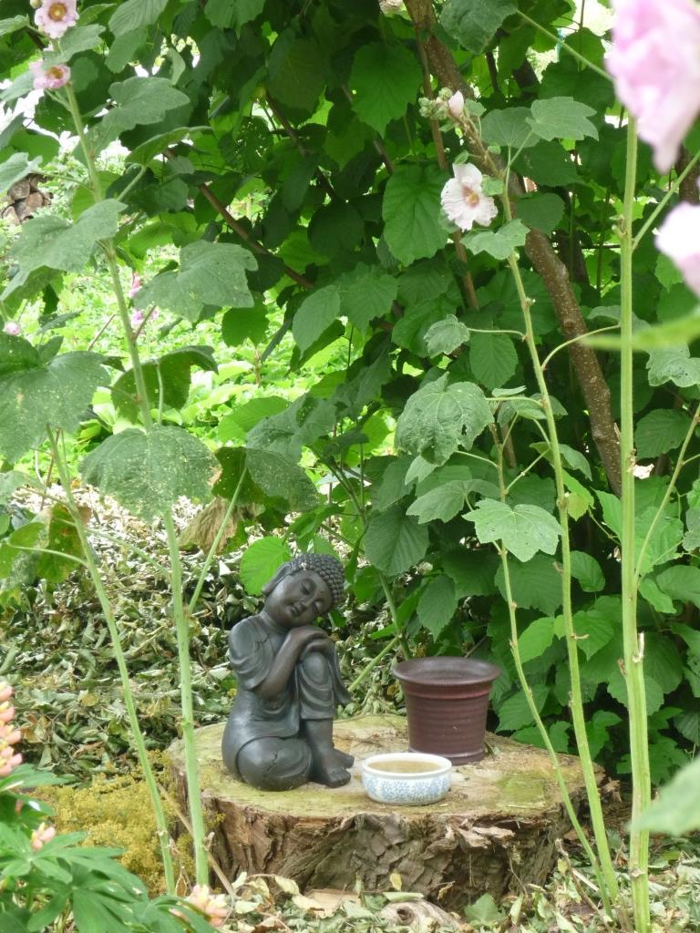 Buddha in the little wood